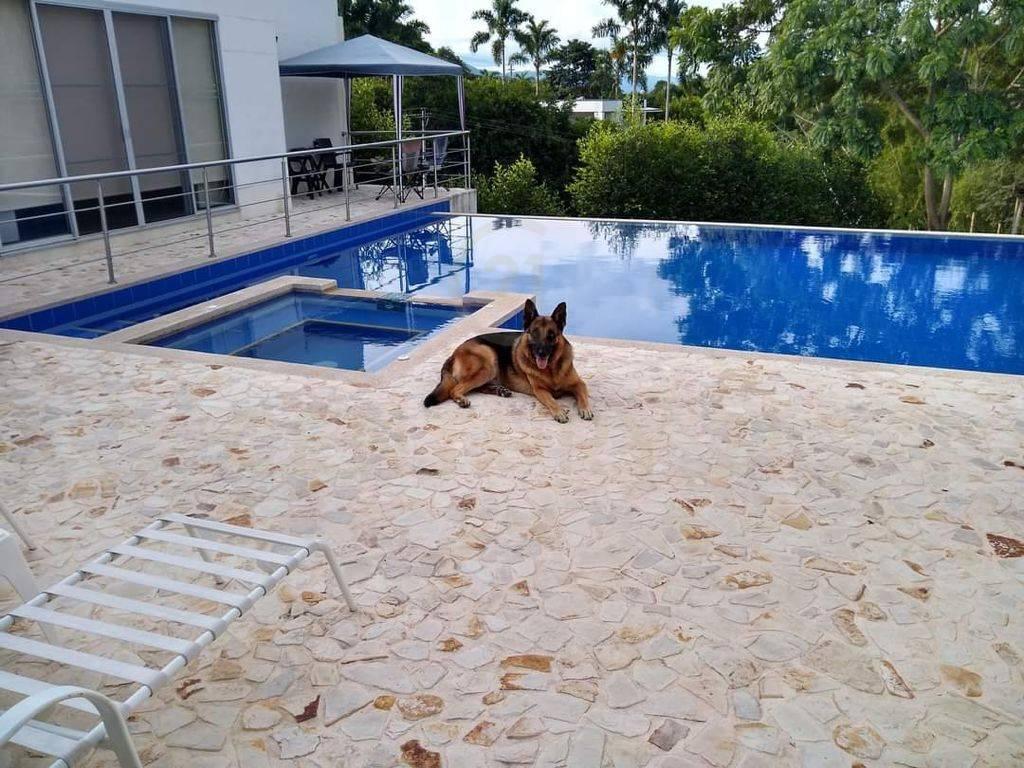Casa en Pereira 127130, foto 6